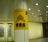 080216nakasukawabataeki