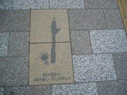 0802216ashiato