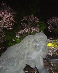 080302yushima3